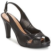 Παπούτσια Γυναίκα Σανδάλια / Πέδιλα Betty London LIMONADE Black