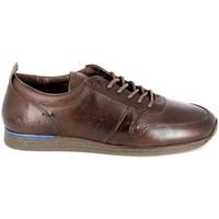 Παπούτσια Άνδρας Derby Kickers Olympei Marron Brown