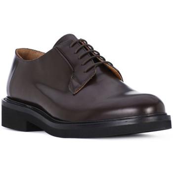 Παπούτσια Άνδρας Derby Luca Rossi POLISH OXBLOOD Rosso