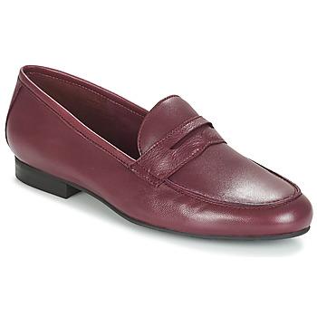 Παπούτσια Γυναίκα Μοκασσίνια André TIM Bordeaux