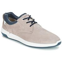Παπούτσια Άνδρας Χαμηλά Sneakers Lloyd ACHILLES Beige