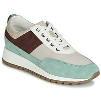 Παπούτσια Γυναίκα Χαμηλά Sneakers Geox D TABELYA Beige / Brown / Green