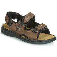 Παπούτσια Άνδρας Σανδάλια / Πέδιλα Josef Seibel FRANKLIN Brown