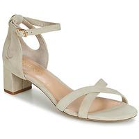 Παπούτσια Γυναίκα Σανδάλια / Πέδιλα Lauren Ralph Lauren FOLLY Beige