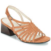 Παπούτσια Γυναίκα Σανδάλια / Πέδιλα Vagabond BELLA Beige