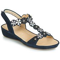 Παπούτσια Γυναίκα Σανδάλια / Πέδιλα Ara CAP-HS Black