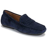 Παπούτσια Άνδρας Μοκασσίνια Polo Ralph Lauren REYNOLD Marine