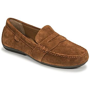 Παπούτσια Άνδρας Μοκασσίνια Polo Ralph Lauren REYNOLD Brown