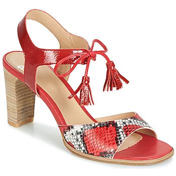 Παπούτσια Γυναίκα Σανδάλια / Πέδιλα Perlato RUBY Red