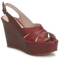 Παπούτσια Γυναίκα Σανδάλια / Πέδιλα Paco Gil RITMO SELV Camel / Bordeaux