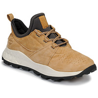 Παπούτσια Άνδρας Χαμηλά Sneakers Timberland BROOKLYN LACE OXFORD Beige