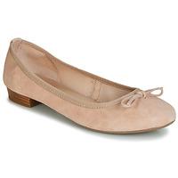 Παπούτσια Γυναίκα Μπαλαρίνες André CINDY Nude