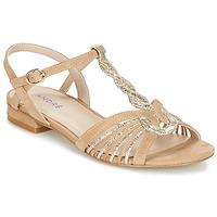 Παπούτσια Γυναίκα Σανδάλια / Πέδιλα André CALLISTO Beige / Gold