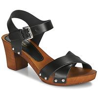 Παπούτσια Γυναίκα Σανδάλια / Πέδιλα André BONGO Black