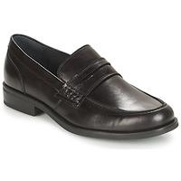 Παπούτσια Άνδρας Μοκασσίνια André KOLL Black
