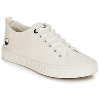 Παπούτσια Άνδρας Χαμηλά Sneakers André DIVING Άσπρο