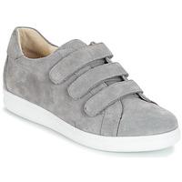 Παπούτσια Άνδρας Χαμηλά Sneakers André AVENUE Grey