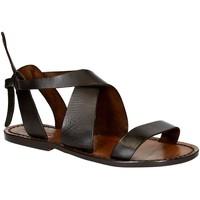 Παπούτσια Γυναίκα Σανδάλια / Πέδιλα Gianluca - L'artigiano Del Cuoio 570 D MORO CUOIO Testa di Moro