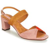 Παπούτσια Γυναίκα Σανδάλια / Πέδιλα Chie Mihara LUZULA Ροζ