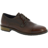 Παπούτσια Άνδρας Derby Raymont 625 BROWN marrone