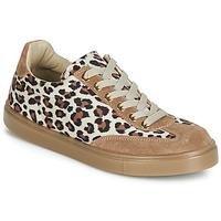 Παπούτσια Γυναίκα Χαμηλά Sneakers André ARDOISE Leopard
