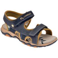 Παπούτσια Αγόρι Σπορ σανδάλια Lumberjack  Μπλέ