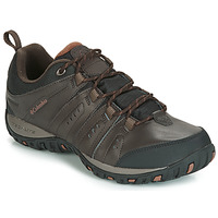 Παπούτσια Άνδρας Multisport Columbia WOODBURN II WATERPROOF Brown