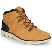 Παπούτσια Άνδρας Ψηλά Sneakers Timberland BRADSTREET HIKER Blé / Brown