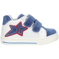 Παπούτσια Κορίτσι Ψηλά Sneakers Balocchi 493265 Blue and white