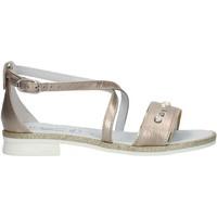Παπούτσια Κορίτσι Σανδάλια / Πέδιλα Nero Giardini P830480F Nut