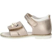 Παπούτσια Κορίτσι Σανδάλια / Πέδιλα NeroGiardini P820340F Nut