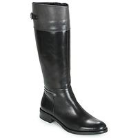 Παπούτσια Γυναίκα Μπότες για την πόλη Dorking TIERRA Black / Grey