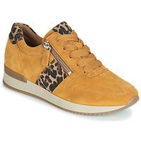 Παπούτσια Γυναίκα Χαμηλά Sneakers Gabor 3342010 Moutarde