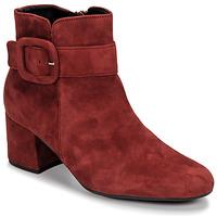 Παπούτσια Γυναίκα Μποτίνια Gabor 3581610 Red