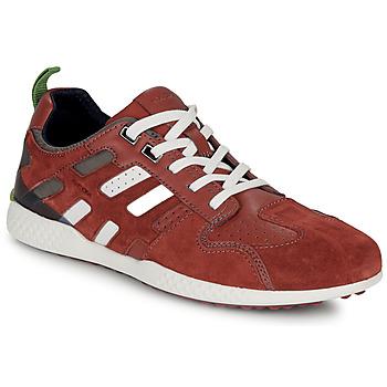 Παπούτσια Άνδρας Χαμηλά Sneakers Geox U SNAKE.2 Brown / Brique