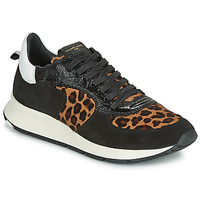 Παπούτσια Γυναίκα Χαμηλά Sneakers Philippe Model MONTECARLO Black / Leopard