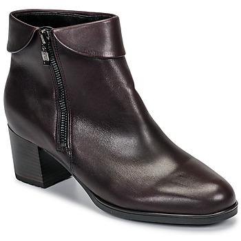 Παπούτσια Γυναίκα Μποτίνια Ara 16913-67 Brown