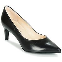 Παπούτσια Γυναίκα Γόβες Peter Kaiser NURA Black