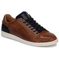 Παπούτσια Άνδρας Χαμηλά Sneakers Redskins OSTAN Cognac / Marine