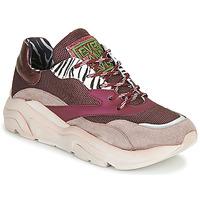 Παπούτσια Γυναίκα Χαμηλά Sneakers Meline JOLI Ροζ / Beige
