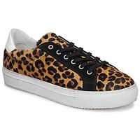 Παπούτσια Γυναίκα Χαμηλά Sneakers Ikks BP80245-62 Leopard