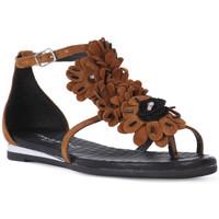 Παπούτσια Γυναίκα Σανδάλια / Πέδιλα Sono Italiana CROSTA CUIO Nero