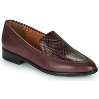 Παπούτσια Γυναίκα Μοκασσίνια Betty London LILI-FLEUR Bordeaux
