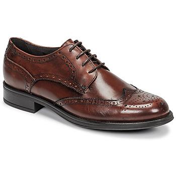 Παπούτσια Άνδρας Derby Carlington LOUVIAN Brown
