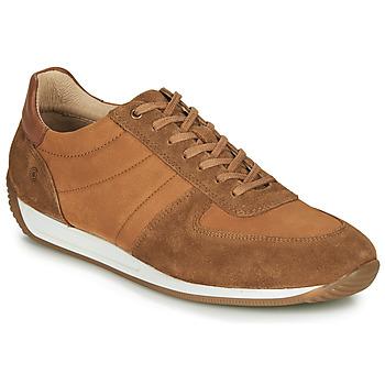 Παπούτσια Άνδρας Χαμηλά Sneakers Casual Attitude LARY Camel