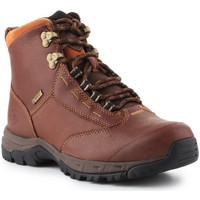 Παπούτσια Γυναίκα Μπότες Producent Niezdefiniowany Ariat Berwick lace GTX Insulated 10016298 brown