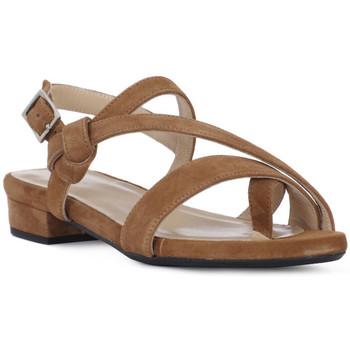 Παπούτσια Γυναίκα Σανδάλια / Πέδιλα Frau CAMOSCIO SELLA Marrone