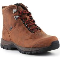 Παπούτσια Γυναίκα Πεζοπορίας Ariat Trekking shoes  Berwick Lace Gtx Insulated 10016229 brown