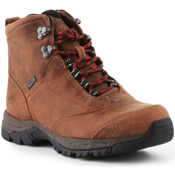 Πεζοπορίας Ariat Trekking shoes Berwick Lace Gtx Insulated 10016229