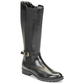 Παπούτσια Γυναίκα Μπότες για την πόλη André ELODIE Black
